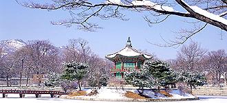 47期-聖誕-韓國圖.jpg