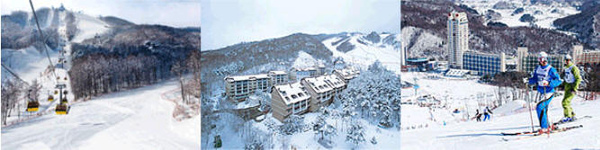 體驗滑雪趣-鳳凰滑雪場.jpg