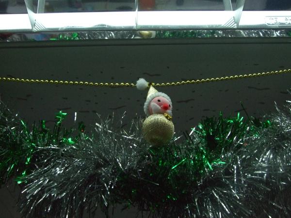 009-吉帝旅遊2009聖誕節3樓-個人最愛這一隻了.JPG