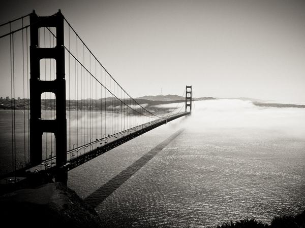 Into the Fog.bmp