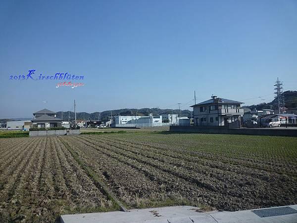 貴志川線沿途一景