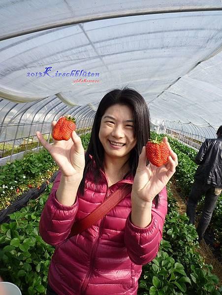 超大的草莓