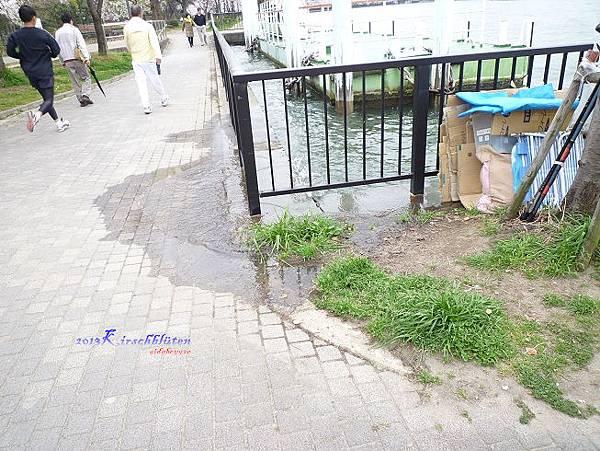 櫻之宮公園大川滿潮