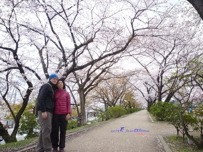 八条ヶ池池畔櫻花步道