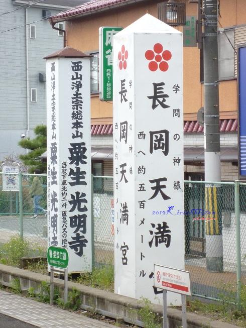 長岡京櫻花祭八条ヶ池