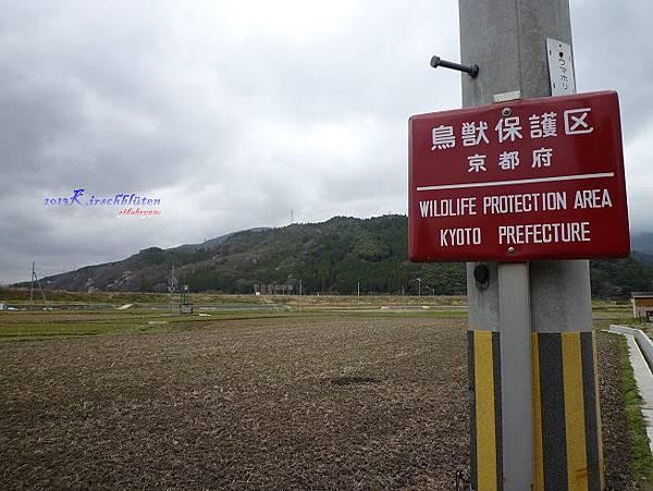 JR馬堀駅旁