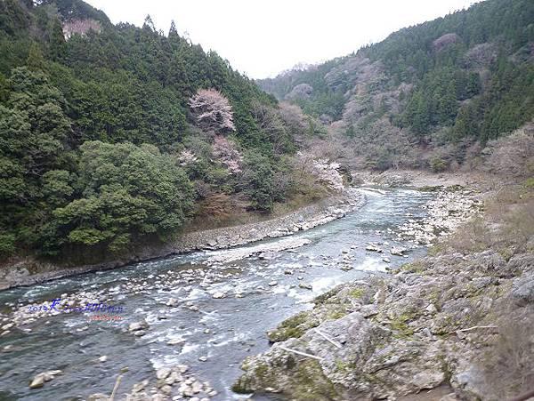 保津川一景
