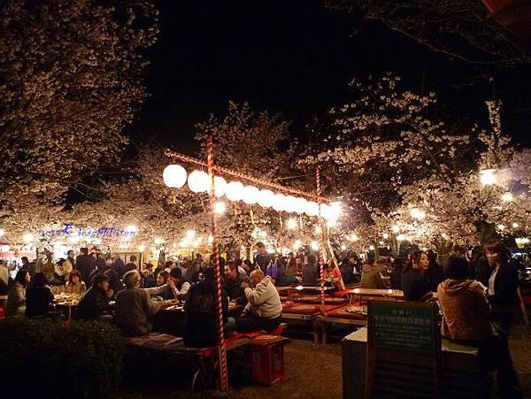 円山公園櫻花祭