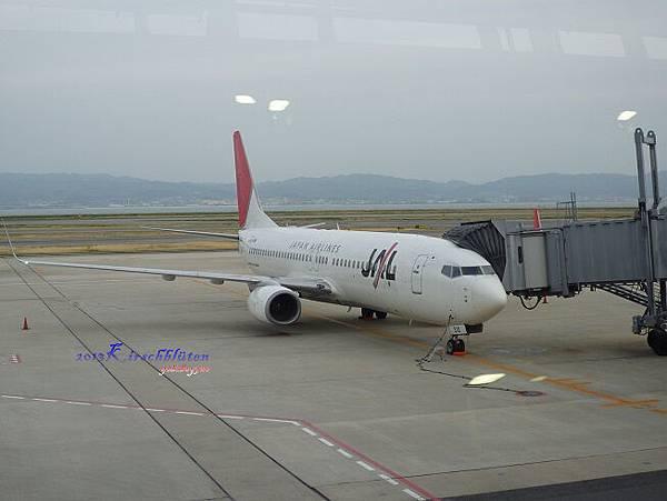 我們要搭的JL815飛機B737-800