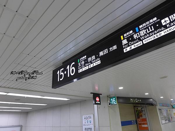 P1010372.JPG