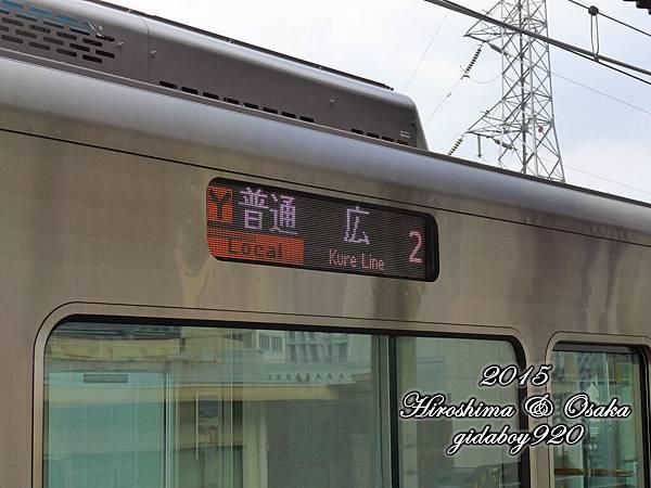P1030294.JPG