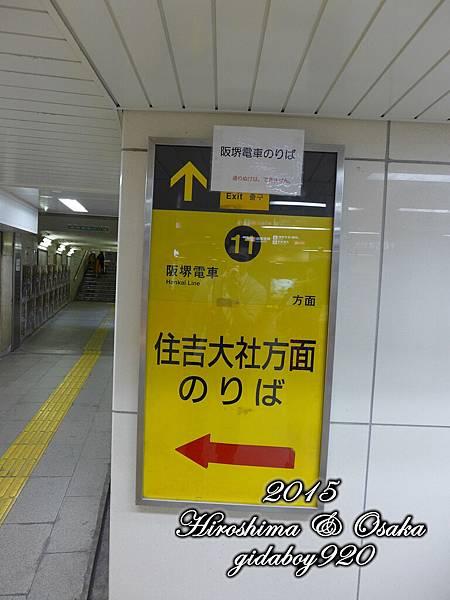 P1030600.JPG