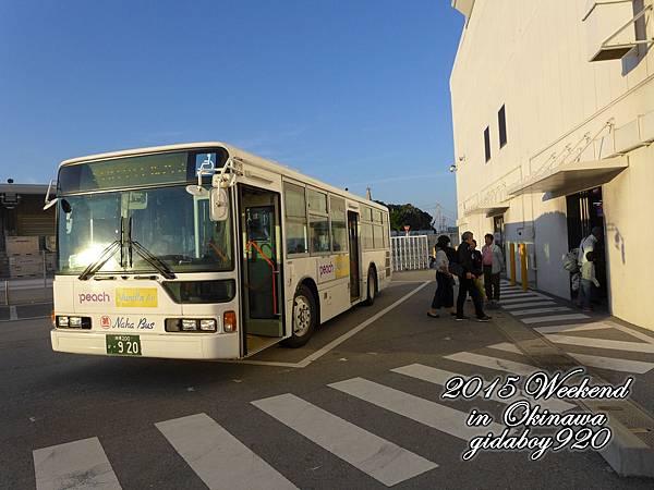 P1050020.JPG