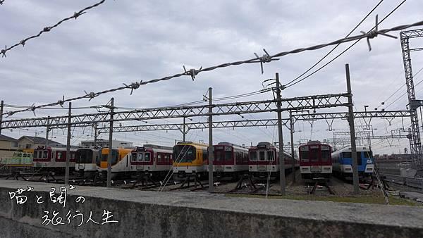 P1060042.JPG