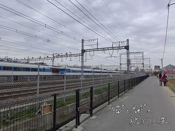 P1060052.JPG