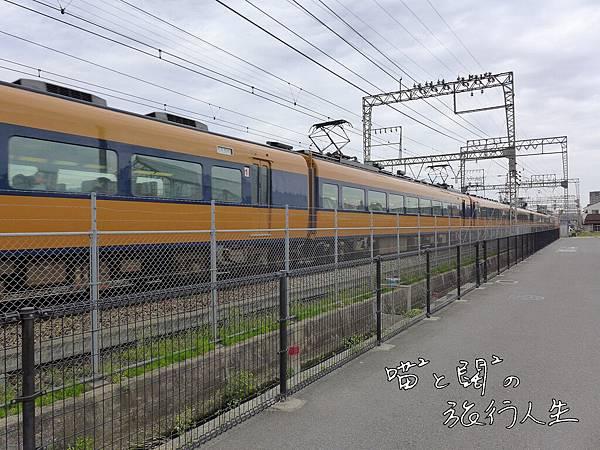 P1060053.JPG
