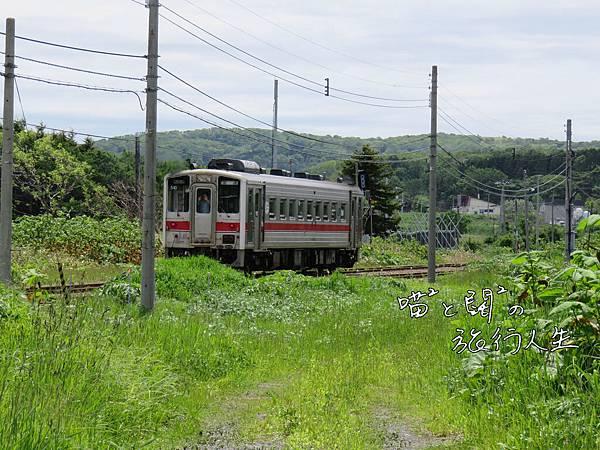 P1060508-3.JPG