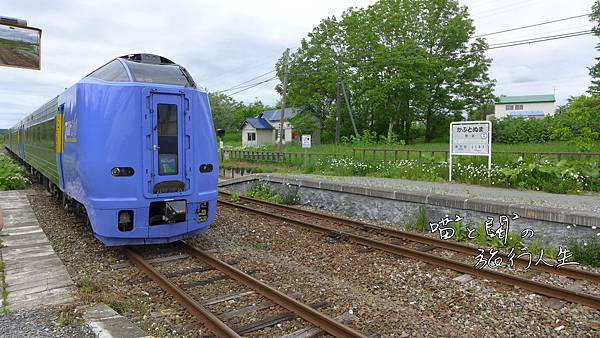 P1060551-4.JPG