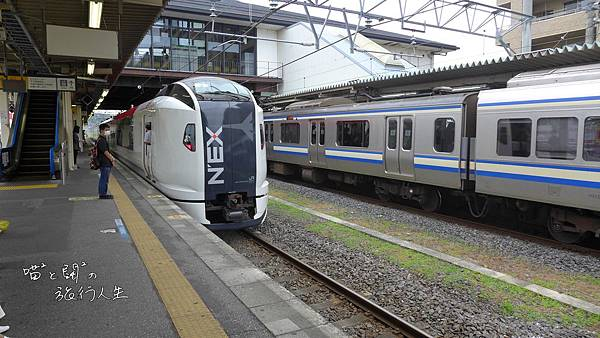 P1070775.JPG