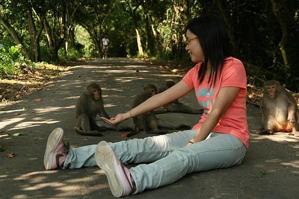 小內跟猴子,她的側臉超正