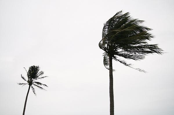 風勢依舊很大
