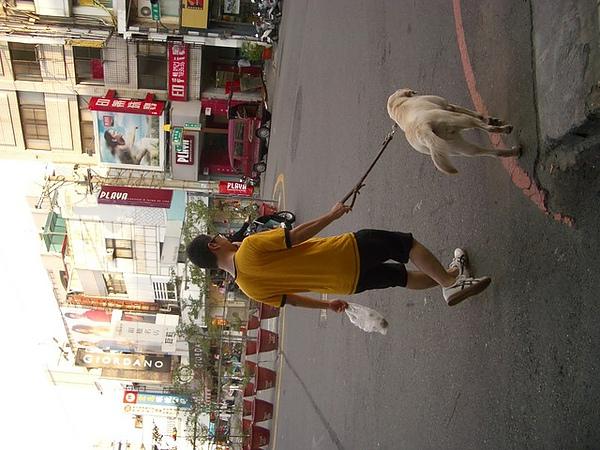 居家的男人外遇小母狗