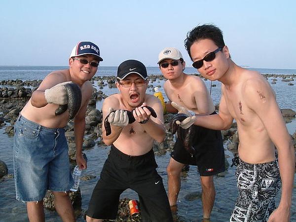 海參很好玩,很像懶叫