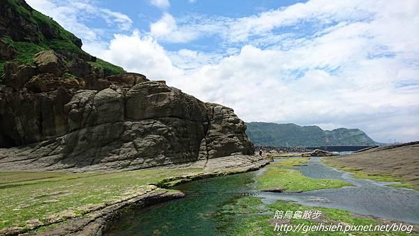 【陪烏龜散步】20170520 八斗子藻樂趣_穿草鞋體驗潮間帶