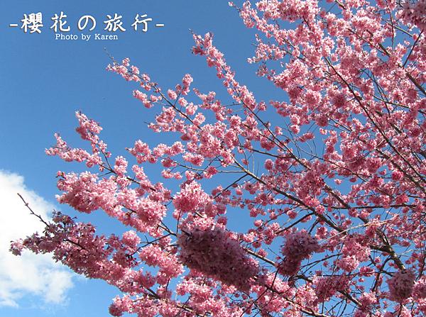 螢幕快照 2014-02-10 下午1.39.08.png