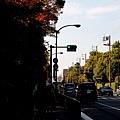 05-京都 京都御所  002