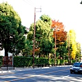 05-京都 京都御所  004