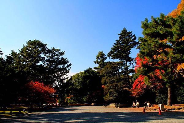 05-京都 京都御所  097
