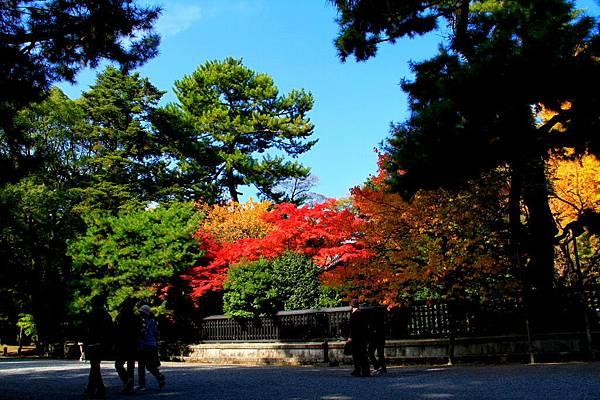 05-京都 京都御所  116