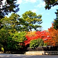 05-京都 京都御所  131