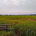 IMAG3589