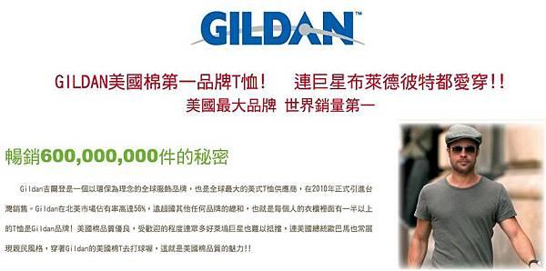 GILDAN T恤.jpg