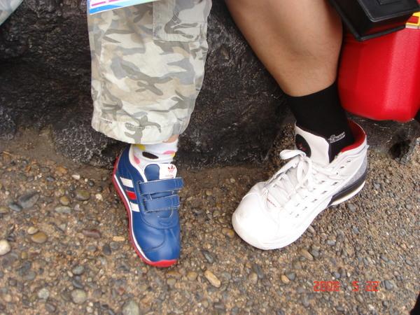 父子腳的腳