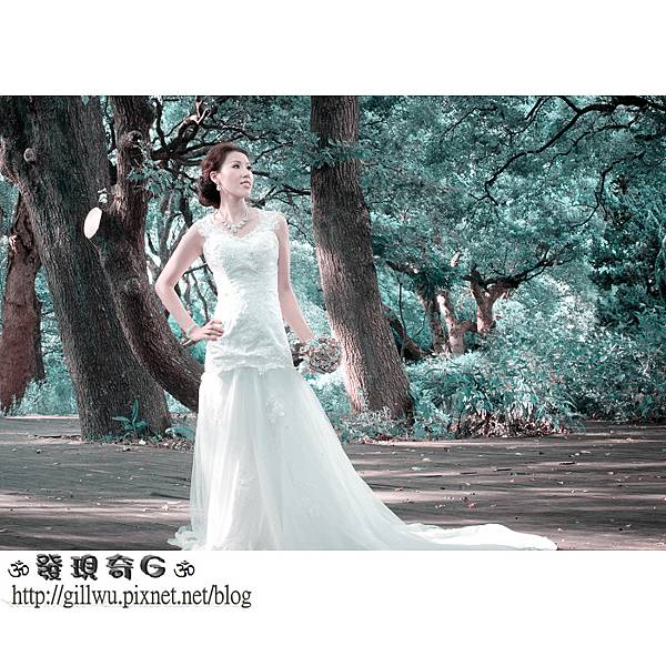 DSC_9085-1.jpg