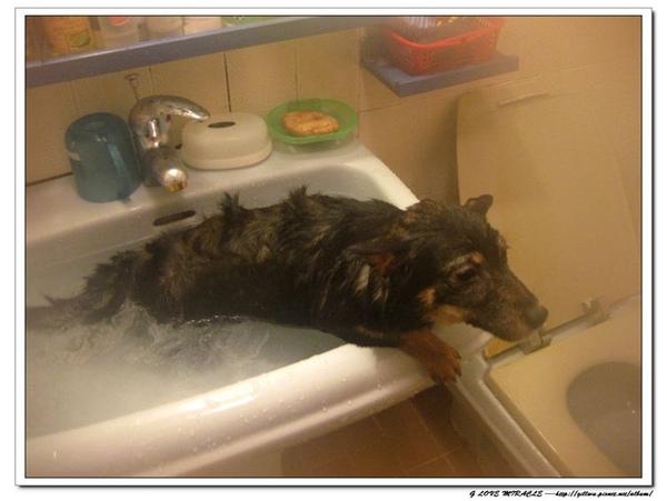 還是天氣冷泡泡個熱水澡,也還是挺不錯的嗎??
