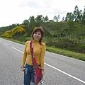 at the roadside of Skye