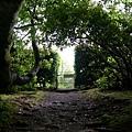 0620_60garden entry