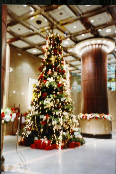 1204樓下的聖誕樹