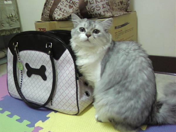 哇~~~寵物袋變粉小了~.jpg