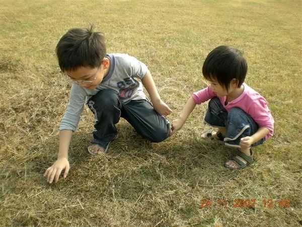 兩兄妹玩含羞草