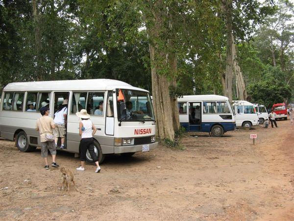 大吳哥城內的環保車
