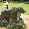 牛在神廟前安靜聽命差遣