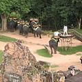 從巴肯寺看乘象臺的觀光客