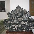 嶽麓書院的菊花石 朵朵清晰可見