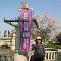 100週年的鶴舞公園