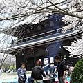 午后,日本人都卡好賞花的位子,還烤起肉來,真是會享受啊~